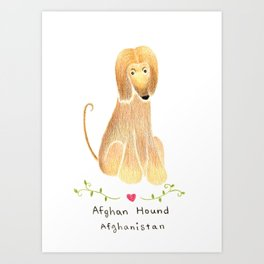 A is for Afghan Hound Art Print