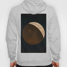 The Trouvelot astronomical drawings - 1882 Moon Hoody