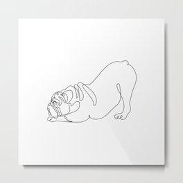 One line English Bulldog Downward Dog Metal Print