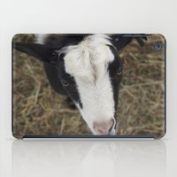 goat iPad Cases featuring Goat by JCalls Photography