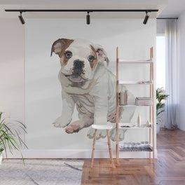 The English Bulldog Wall Mural