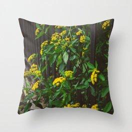 Brooklyn Blooms III Throw Pillow