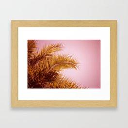 Rose Gold Tropics Framed Art Print