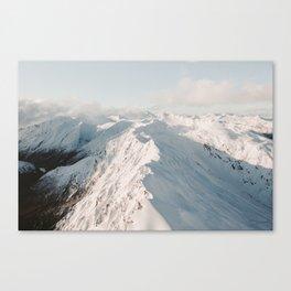Backbone Canvas Print