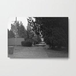 Cedar Lane Metal Print