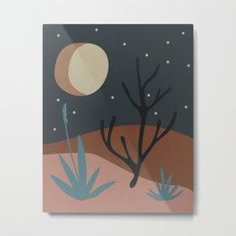 Desert Landscape at Night Metal Print