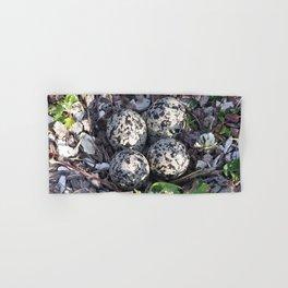 Killdeer eggs in nest Hand & Bath Towel