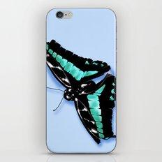 Papillon vert iPhone & iPod Skin