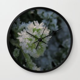 Frost crystals Wall Clock