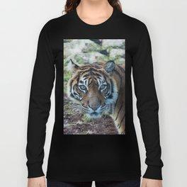 Tiger, Tiger Long Sleeve T-shirt