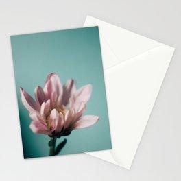 Vintage Blossom '11 Stationery Cards