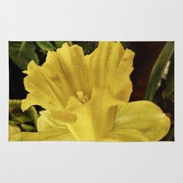 Daffodil at Barthel's Farm Market Rug