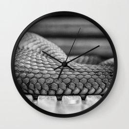 Snake - Natix natix Wall Clock