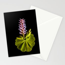 Natural Tablecloth Stationery Cards