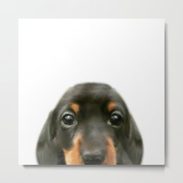 Dachshund baby Dog illustration original painting print Metal Print
