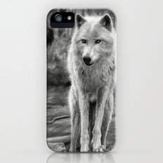 White Wolf in the Forest iPhone SE Slim Case
