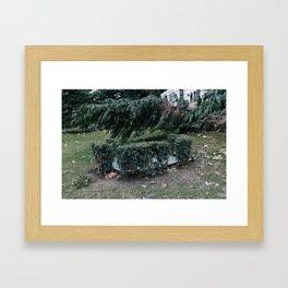 Existentiallis I Framed Art Print