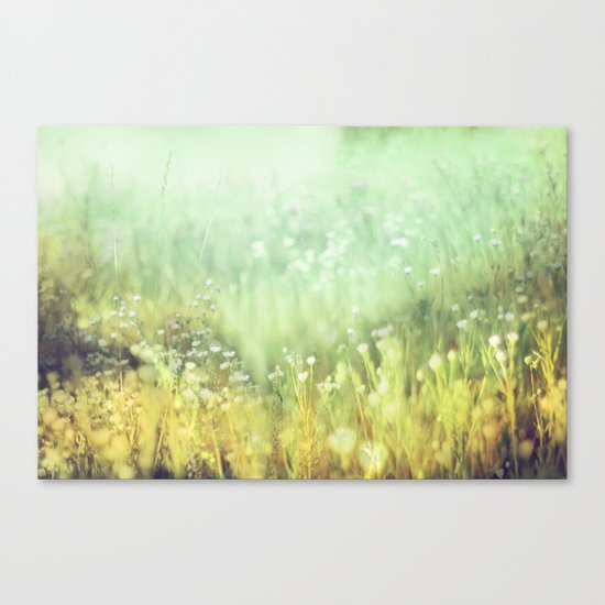 Meadowland Canvas Print