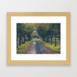 Athy, Ireland Framed Art Print