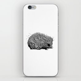 Leaf Hedgehog iPhone Skin