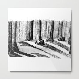 Trees Casting Shadows in the Woods Metal Print