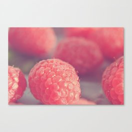 Raspberry art Canvas Print