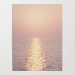 cashmere rose sunset Poster