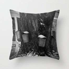 Sugaring 2 - Maple Syrup Throw Pillow