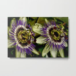 double passion Metal Print