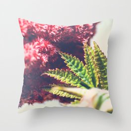 Sumac Rhus typhina also called Virginia Sumac close-up plant leaf growing Throw Pillow