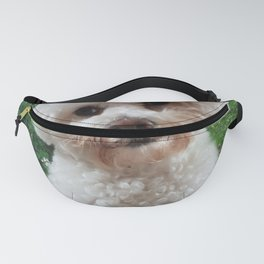 Cavachon - Green Background Fanny Pack