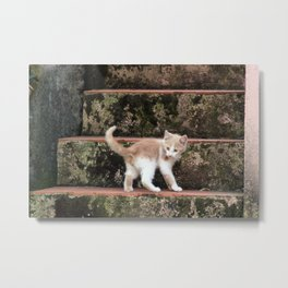 Cute Kitten Playing on the Stairs Metal Print