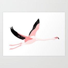 Flying flamingo Art Print