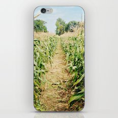 cornfield iPhone & iPod Skin