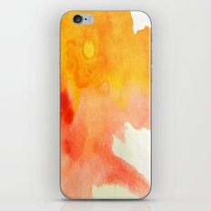 Sunset XVI iPhone & iPod Skin