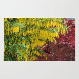 Warm comforting autumn trees Rug