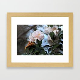 Flower No 3 Framed Art Print