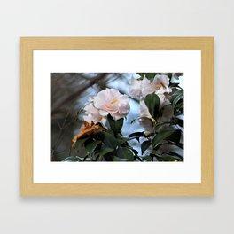 Flower No 3 Framed Art Print