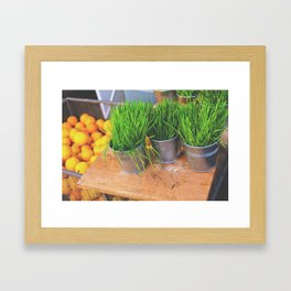 Wheat Grass & Oranges Framed Art Print