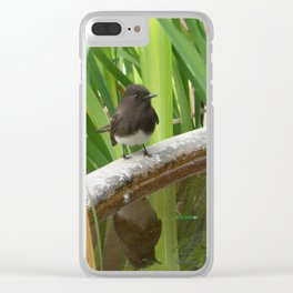 Black Phoebe at the Fountain Clear iPhone Case