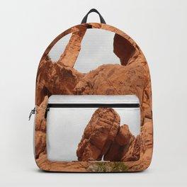 Elephant Rock Backpack