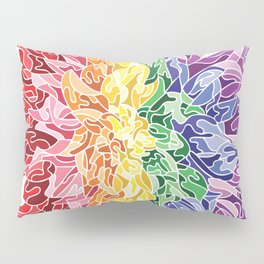 Rainbow Flower Pillow Sham