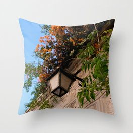 Lamp and Colorful Flowers I Throw Pillow