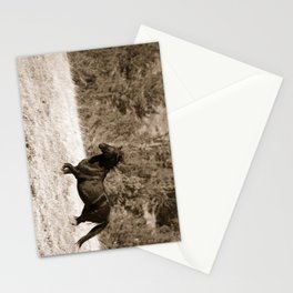 Free Runner - Sepia Stationery Cards