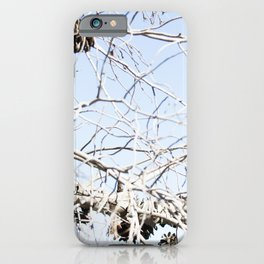 Nature - Tree Branch iPhone Case