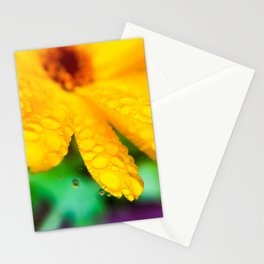 Calendula Stationery Cards