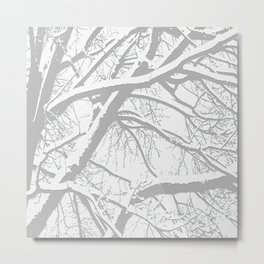 Two-Toned Winter Metal Print