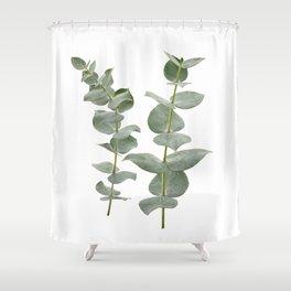 Eucalyptus Branches II Shower Curtain