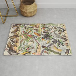 Adolphe Millot Birds Vintage Scientific Illustration Old Le Larousse pour tous llustration Rug