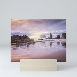 My Therapist the Ocean Face Rock Beach Mini Art Print